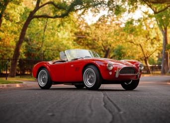 Theo-Graphics - 1965 Shelby Cobra 289 (Full Res) (20 of 60)