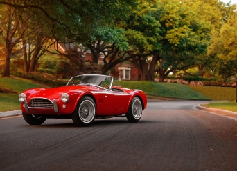 Theo-Graphics - 1965 Shelby Cobra 289 (Full Res) (3 of 60)
