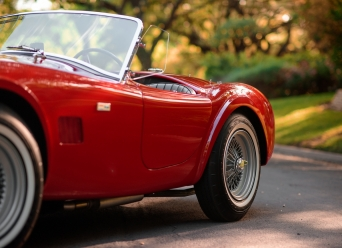 Theo-Graphics - 1965 Shelby Cobra 289 (Full Res) (40 of 60)