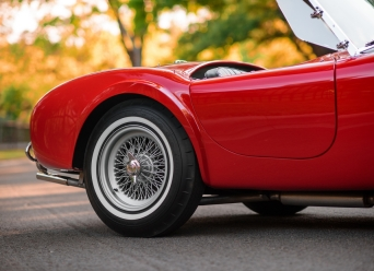 Theo-Graphics - 1965 Shelby Cobra 289 (Full Res) (51 of 60)