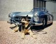 "David Douglas Duncan Photography of the ""Secret"" Mercedes-Benz SLS"